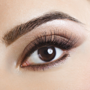 shutterstock_browlash